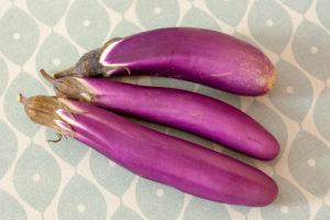 aubergine chinoise